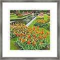 Keukenhof Gardens 70 Framed Print