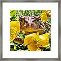 Kiss Me Baby Framed Print