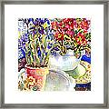 Kitchen Primrose Framed Print