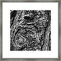 Knots And Swirls Bw Framed Print