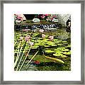 Koi Pond Framed Print by Doug Kreuger