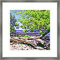 Kona Coast Framed Print
