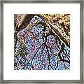 La Vida Es Bella Framed Print