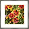 Lady Bird And Her Flowers Framed Print