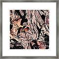 Lady Bug In Spring Framed Print