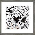 Lake Country Quail Framed Print