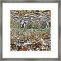 Lakeshore Rocks 2 Framed Print