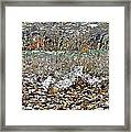 Lakeshore Rocks 4 Framed Print
