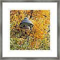 Lamp In The Autumn Leaves Framed Print