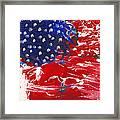 Land Of Liberty Framed Print