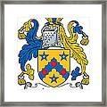 Laney Coat Of Arms Irish Framed Print