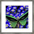 Large Green Butterfly Framed Print