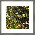 Leafy Tree Bark Image Framed Print