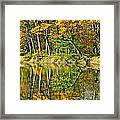 Leaning Trees Framed Print