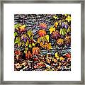 Leaves At The Levee Framed Print