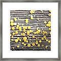 Lemon Drops Framed Print