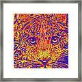 Leopard Eyes Orange Framed Print
