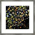Leopard On A Ledge Framed Print