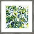 Lians Dandelions Framed Print