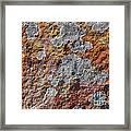 Lichen On Sandstone Framed Print