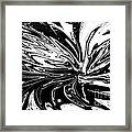 Licorice In Abstract Framed Print