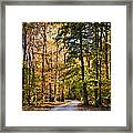 Light Your Way Framed Print
