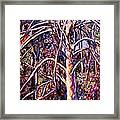 Lightening Struck Tree Framed Print
