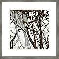 Lilac And Ice Framed Print