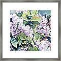 Lilac Delight Framed Print