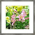 Lily And Friends Framed Print