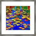 Lily Pads And Koi  Pond Waterlilies Summer Gardens Beautiful Blue Waters Quebec Art Carole Spandau  Framed Print
