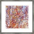 Liquidambar Square Abstract Framed Print