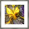 Liquified Orchid Framed Print