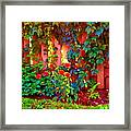 Little Country Scene Pink Flowers Climbing Leaves On Wood Fence Colors Of Quebec Art Carole Spandau Framed Print