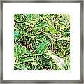 Lizard 7 Framed Print