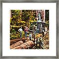 Logging With Steam Donkey Engine Near Olympia Washington Circa 1900 Framed Print