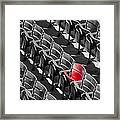 Lone Red Number 21 Fenway Park Bw Framed Print
