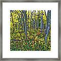 Lonely September Framed Print