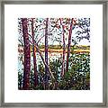 Long Lake Framed Print