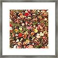 Look All Around Framed Print