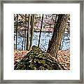 Looking Downhill Framed Print