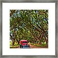 Louisiana Dream Drive  Framed Print
