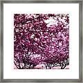Lovely In Pink Framed Print
