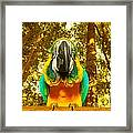 Macaw Parrot Framed Print