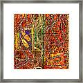 Magic Carpet Framed Print