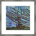 Man Beneath The Willow Framed Print