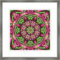 Mandala Green And Pink Framed Print