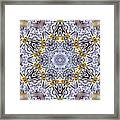 Mandala90 Framed Print