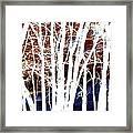 Many Trees Framed Print
