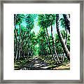 Manzanilla Coconut Estate Framed Print